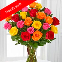 Rainbow Roses OFFER!, USA, Saint Paul